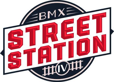 logo BSS 2013